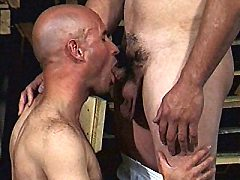 Hard muscled gays Patrick Ives and his lover taking turns gu...