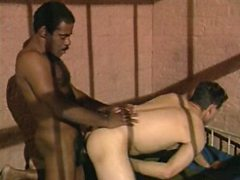 Interracial horny gay couple indulging in mad ass pumping sex toy play