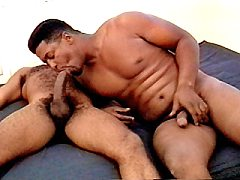 Black bear jerking off playing while sucking huge tits, black cock
