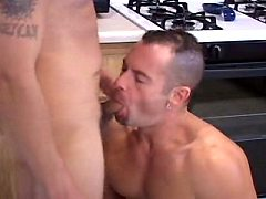 Gay teases cock after sucking action in the cold kitchen
