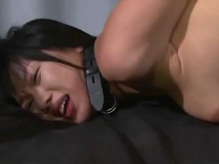 Sexy asian porn slut in collar getting sex satisfaction from horny dude